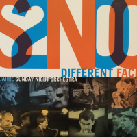 20 Jahre SNO – Different Faces Album Artwork